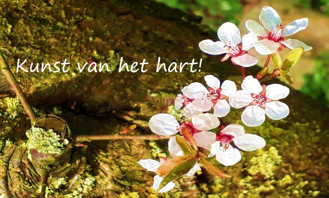 hart-2 copy