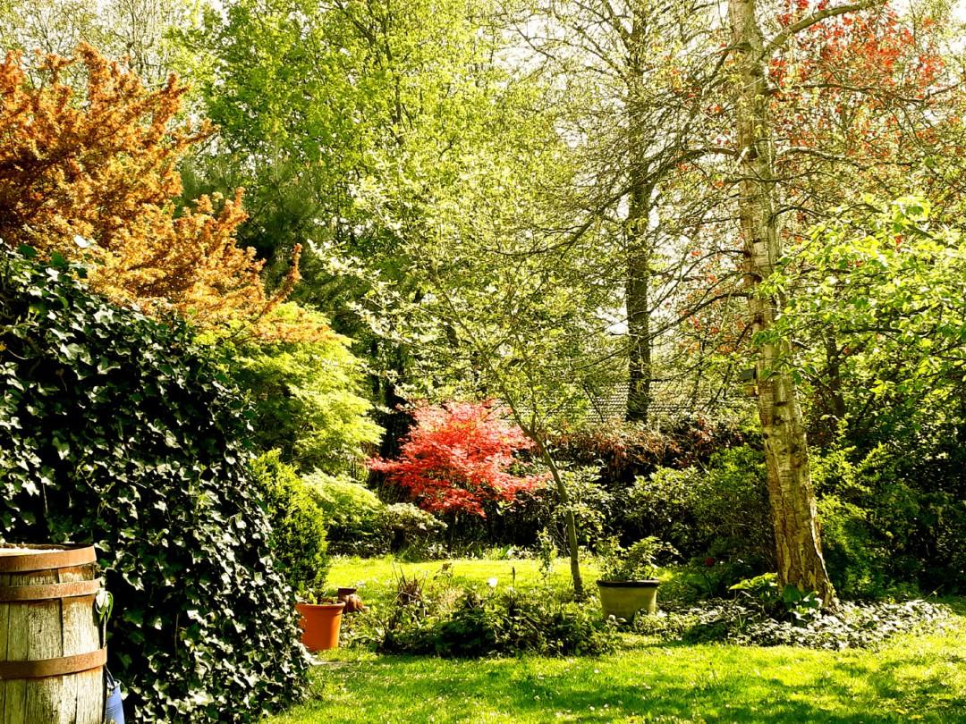 Maangids voor de tuin cover-1
